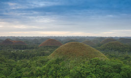 View of the Chocolate Hills in Bohol, Philippines Stock Image