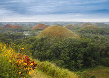 View of the Chocolate Hills in Bohol, Philippines Stock Photo