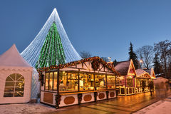 View of the christmas tree in Vilnius Stock Images