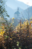 View of the church. View from the brushwood of the church on the hill Stock Photography