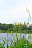 View of the Church Ramenskoye from the side of the lake. Royalty Free Stock Image