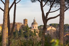 View on church tower and buildings through umbrella pine trees. View on beautiful church and tower and buildings through umbrella pine trees Royalty Free Stock Photos