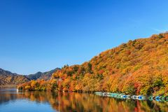 View of Chuzenji lake in autumn season with reflection water in. Nikko, Japan Stock Images