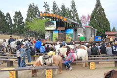 View of Cingjing Farm in Taiwan Royalty Free Stock Photo