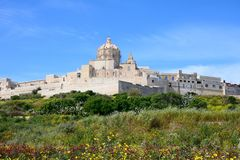 View of the citadel, Mdina. Pretty Spring fields with views towards the citadel, Mdina, Malta, Europe royalty free stock image