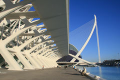 View of City of Art and science. View of City of Arts and Sciences  in Valencia, Spain. L'Oceanogrà is the largest complex of its type in all of Europe Stock Photography
