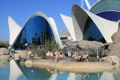 View  the City of Arts and Sciences. In Valencia, Spain Stock Images