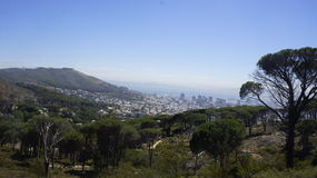 View of the city of Cape Town. Landscape, View of the city of Cape Town, green trees and little bit of ocean Stock Images