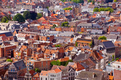 View of the city of Malines (Mechelen) Royalty Free Stock Photos