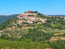 View of the city Motovun in Istria, Croatia.  royalty free stock images