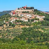 View of the city Motovun in Istria, Croatia. With the surrounding landscape stock photo