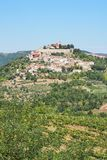 View of the city Motovun in Istria, Croatia. With copyspace royalty free stock photography