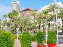 View of the city and palm trees in Alicante. Spain. stock images