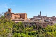 View of the city of Siena Royalty Free Stock Image
