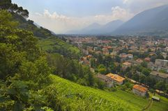 View Of A City In The Valley Near Merano And Terraced Vineyards Royalty Free Stock Photos