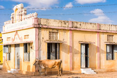 View of a classical Indian building, Puttaparthi, Andhra Pradesh, India. Copy space for text. View of a classical Indian building, Puttaparthi, Andhra Pradesh Stock Photos