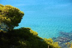 View of the clear azure water and stones with green coniferous trees. Sunny day Sithonia, Halkidiki, Greece. royalty free stock photo