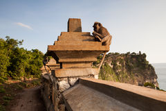 View of a cliff at Uluwatu temple, Bali Indonesia. Royalty Free Stock Photos