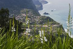 View from cliff. The view from the cliff on the small town Seixal and the shore of the Atlantic Ocean. Madeira Island, Portugal Stock Photo