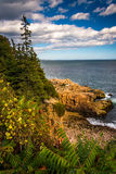 View of cliffs and the Atlantic Ocean in Acadia National Park, M Stock Photos