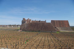 View of the Clos Vougeot royalty free stock photos