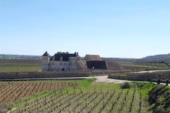 View of the Clos Vougeot royalty free stock photography