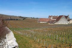 View of the Clos Vougeot Stock Images