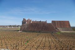 View of the Clos Vougeot royalty free stock photo