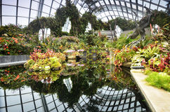View of Cloud Forest at Gardens by the Bay Royalty Free Stock Photography