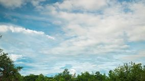 View of cloudscape moving over the trees in a forest of Thailand