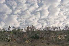 View at the cloudy scenic sky and the beginning of the sunset, Cabo Ledo, Angola stock image