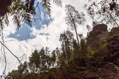 View of a cloudy sky between hilly forest Stock Images