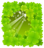 The view of clover leaf Royalty Free Stock Photography