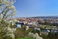 View of the Cluj-Napoca curches, in spring, from Cetatuia hill. Stock Image