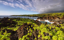 View of the coast and lush vegetation in Waianapanapa State park Stock Photos