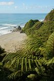 View from the coast road in New Zealand Stock Photography
