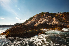 View of the coastal cliff with gulls from the open sea Stock Photos