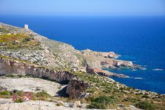 Dingli Cliffs coastline, Malta. View of the coastline during the Springtime at Dingli cliffs, Malta, Europe Stock Images