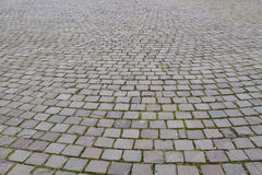 View on a cobblestone road pattern. Closeup view on a cobblestone road pattern   background contrasty due to a side sunlight Stock Image