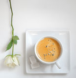 View of  coffee cup with white rose Royalty Free Stock Images