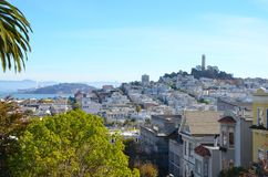 View of Coit Tower and historic neighborhoods San Francisco, California. A view of historic homes, Coit Tower, and San Francisco bay from a hill in SF Royalty Free Stock Photos