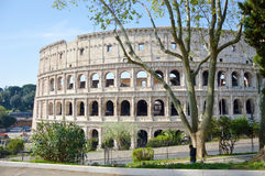 View of the Coliseum in the park in Rome Royalty Free Stock Images