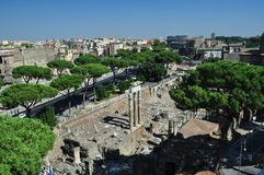 View of the Coliseum Rome Royalty Free Stock Photos