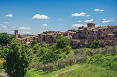 View of Colle di Val d`Elsa town with olive trees and vegetation at the front. A graceful village with its historic center preserved and known by its crystal Royalty Free Stock Photography