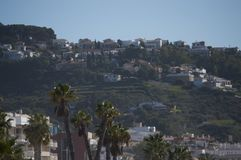 View of the colony from the tip of the monkey royalty free stock image