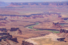 View of the Colorado River in Canyonlands National Park, Utah USA Royalty Free Stock Photo