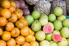 Some tropical fruit Stock Images