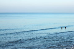 View of the colorful Baltic Sea at autumn. Royalty Free Stock Images