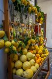 View at the colorful lemons and different citrus fruits at the Italian bazaar royalty free stock photos