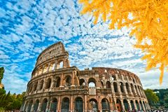 Colosseo, Rome, Italy. View of the Colosseo on a sunny day with autumn leaves, Rome, Italy Stock Image